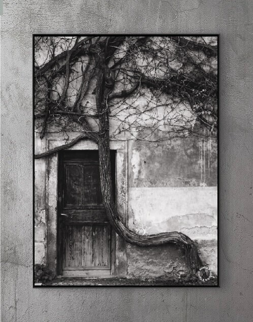 Plakat - Forgotten