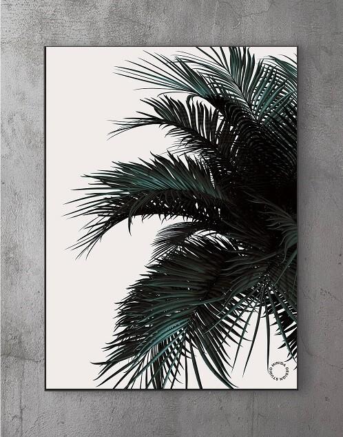 Billeder til stuen - palm2