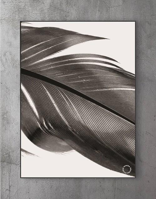 Billeder til stuen - feather II