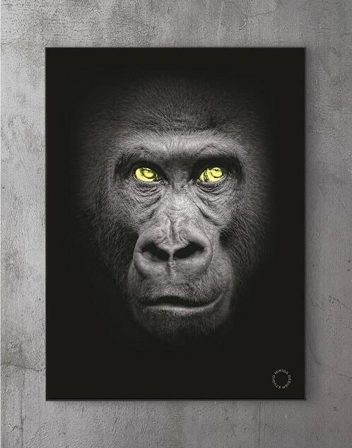 Moderne Plakater Online - Gorilla
