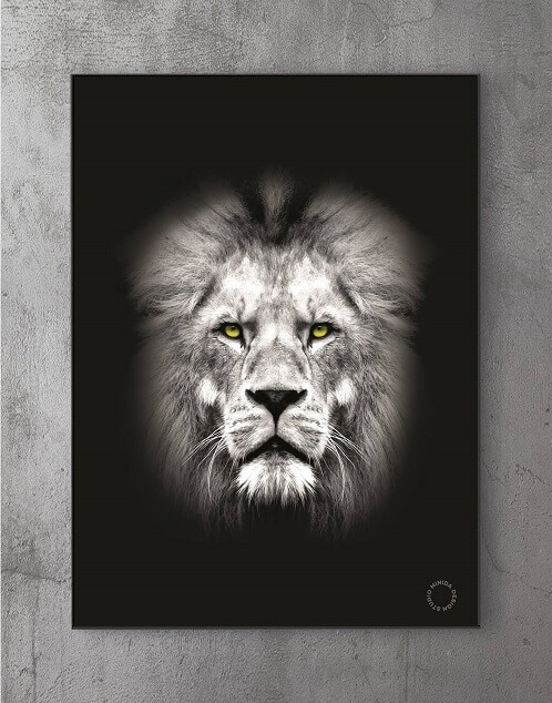 Moderne Plakater Online - Lion Y