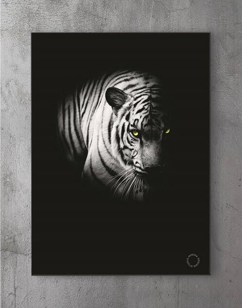 Moderne Plakater Online - Fading