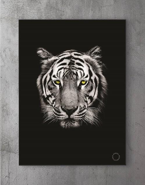 Moderne Plakater Online - Tiger II