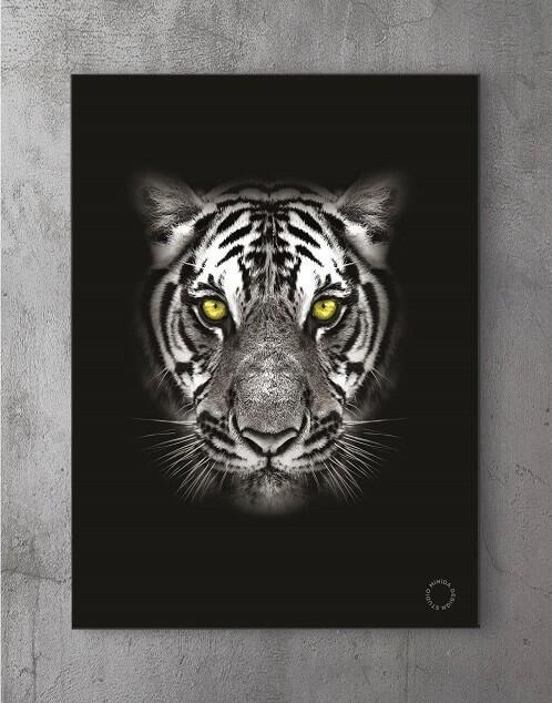 Modene plakater online - Predator Y