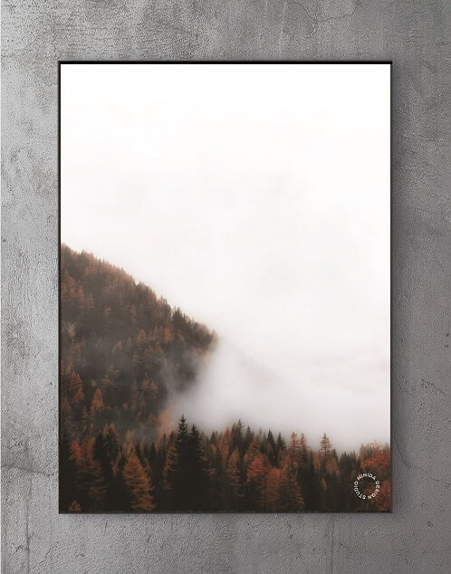 Billige Plakater - The Fog