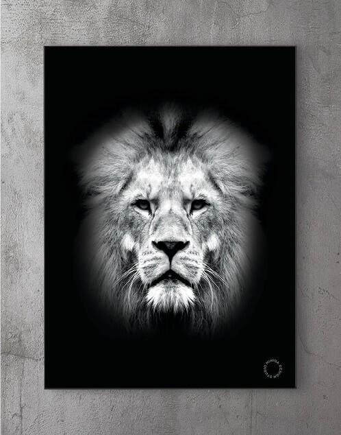 Modene plakater online - The King