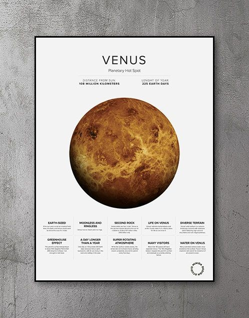 Plakat - Venus Facts